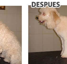 antes-despues_3