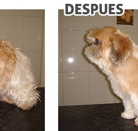 antes-despues_5